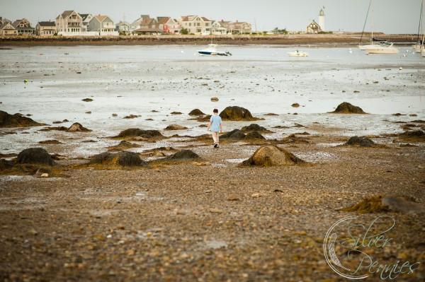 Museum Beach Scituate Kjeld Mahoney