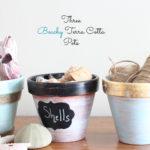 One Terra Cotta Pot, Three Beachy Ways & A Michaels/Hometalk Pinterest Party