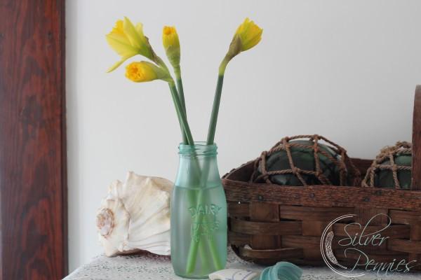daffodils_sea_glass