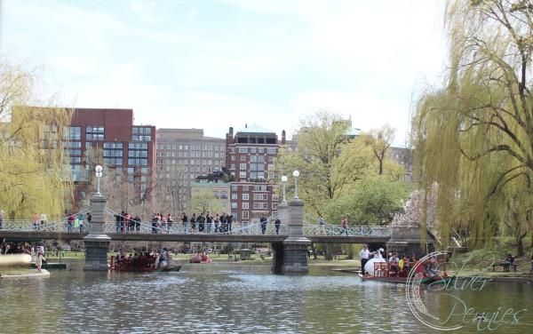 bridge_swan_boats