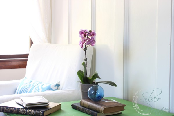orchid_books