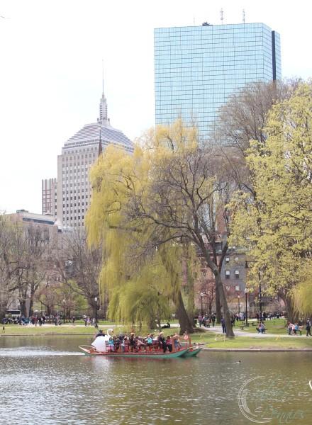 swan_boat_on_pond
