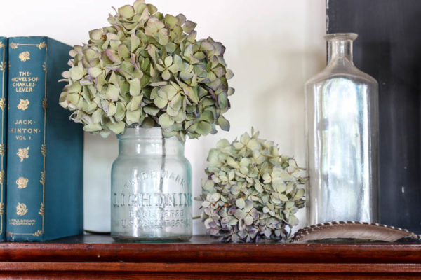 Antique Bottles and Dried Hydrangea