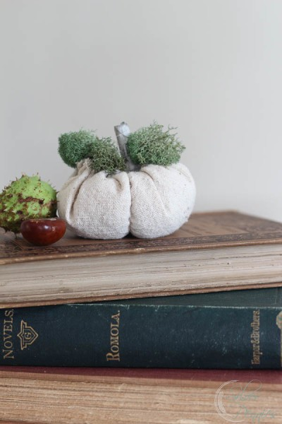 Fabric Pumpkin and books