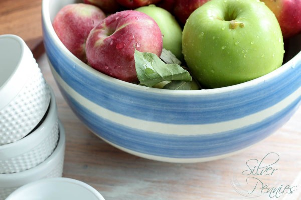 Bowl of Fresh Picked Apples