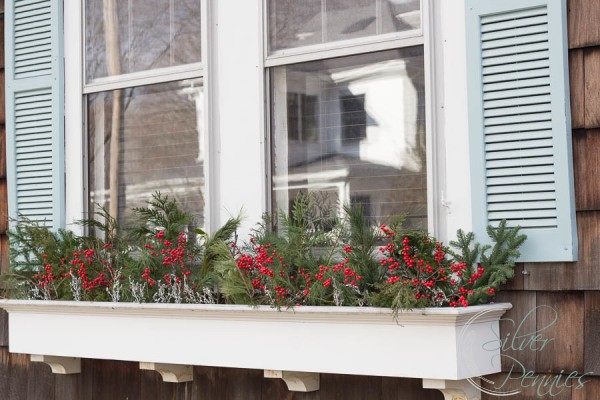 Holly and Greenery in window boxes