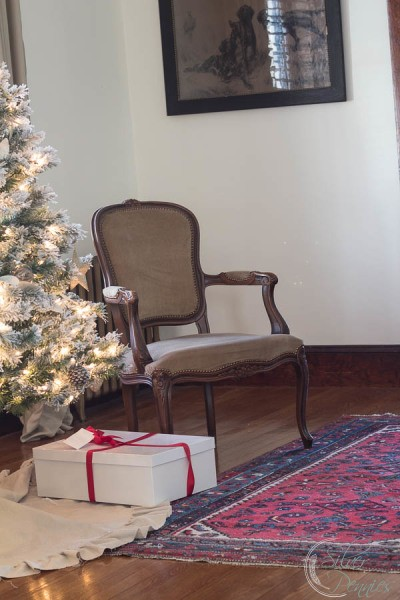 Tree and French Chair