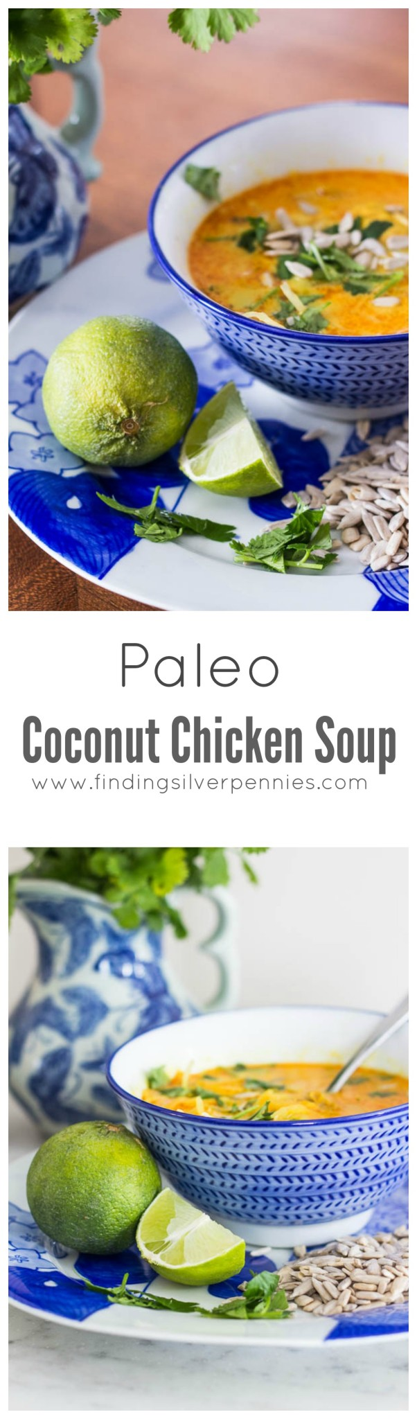 Paleo Coconut Chicken Soup I Finding Silver Pennies