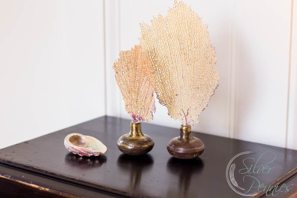 Sea Fans Upcycled