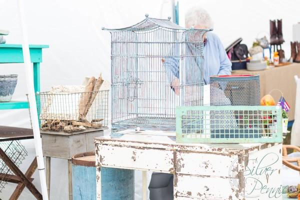 Birdcages Matthew Mead