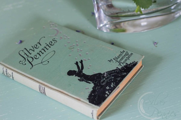 Silver Pennies Book