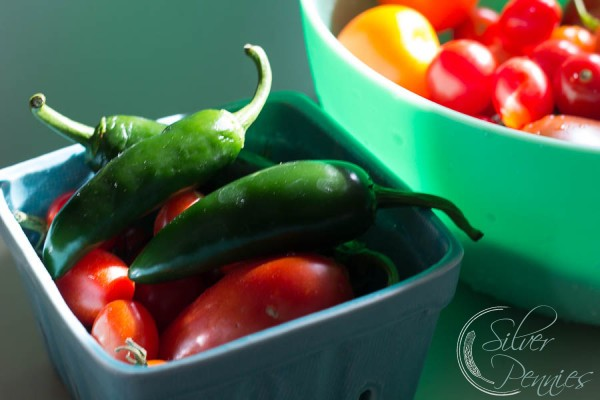 Garden Fresh Chilis and Tomatoes