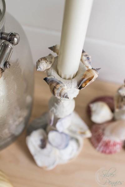 Close Up Shells on Candle Sticks