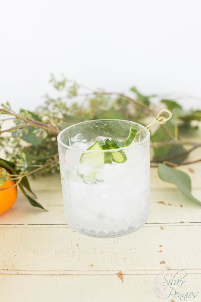 Refreshing Gin and Tonic