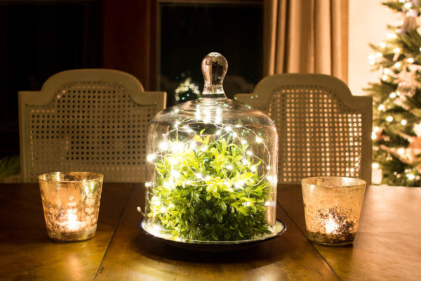 Fairy Lights and Boxwood Dome
