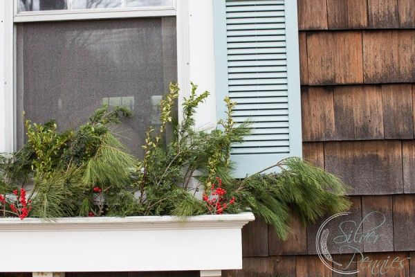 Window Boxes for Christmas