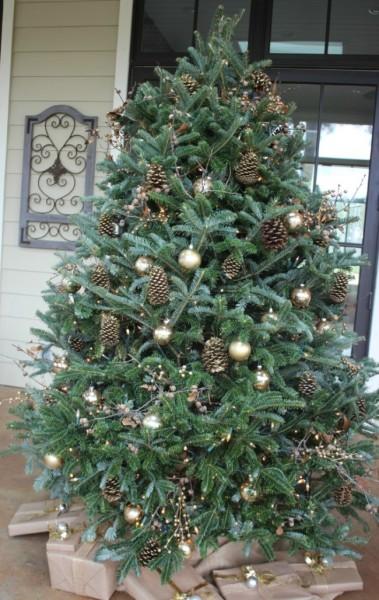 tree-e1449193579318