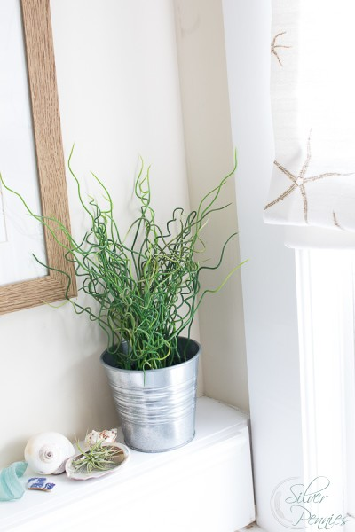 Shells and Sea Grass in Bathroom