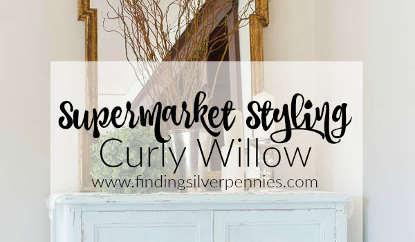 Supermarket Styling: Curly Willow