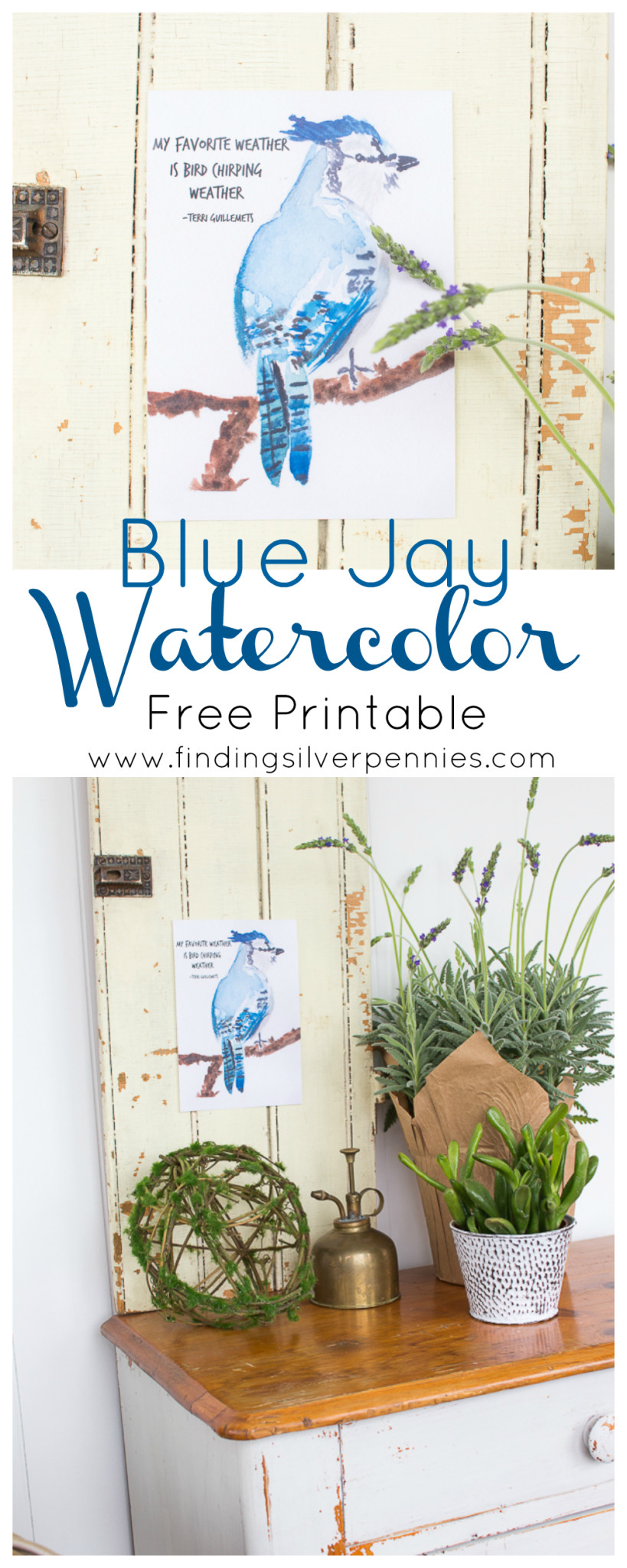 Blue Jay Watercolor Free Printable and Vignette