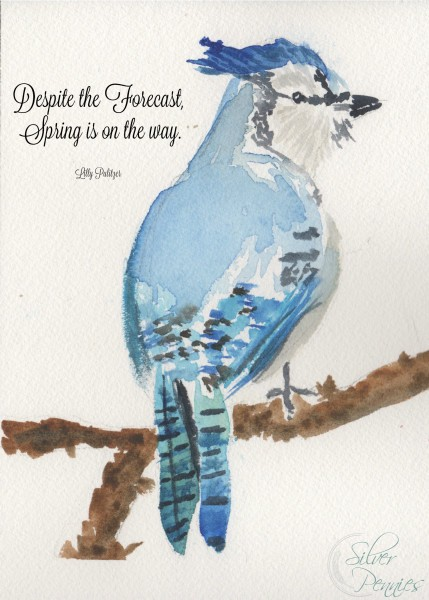 Despite the Forecast Blue Jay Printable