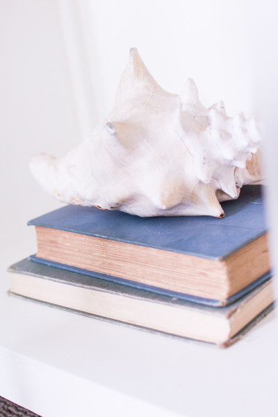 Shell and books.