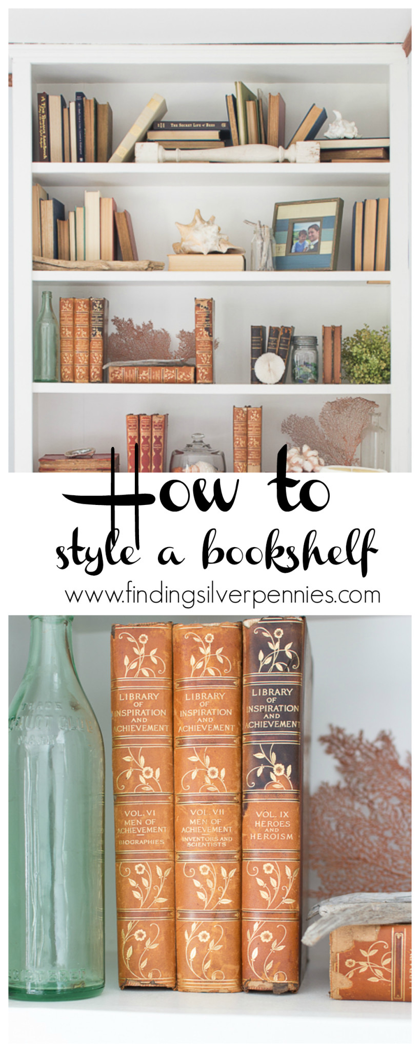 How To Decorate Bookshelves How To Decorate Bookshelves On A Budget  Finding Silver Pennies
