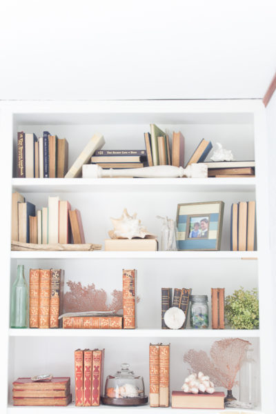 How to Decorate Bookshelves on a Budget