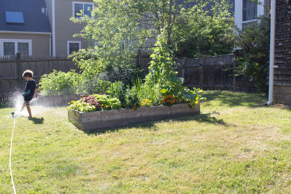 The magic of growing one's own garden and how wonderful it is with children. www.findingsilverpennies.com
