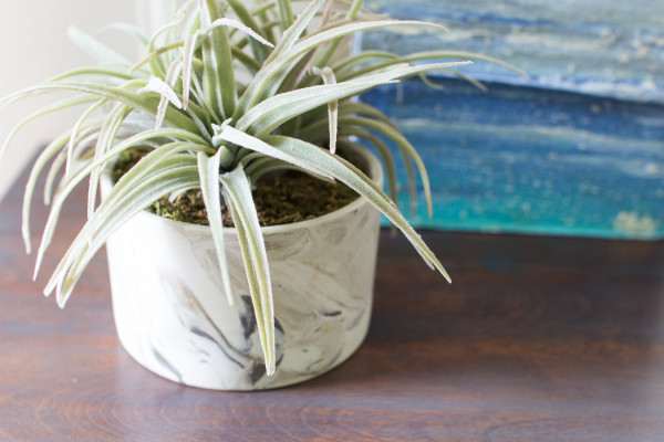 Faux air plant and refinished top of nightstand.