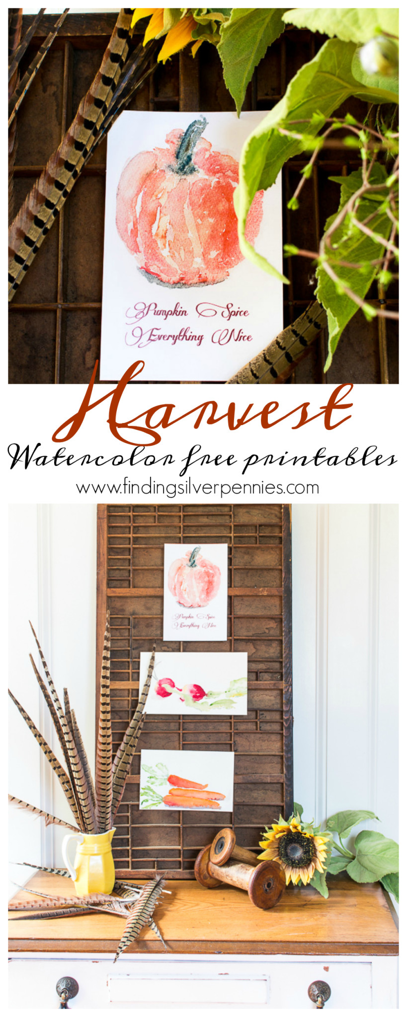 Harvest Watercolor Free Printables I Finding Silver Pennies