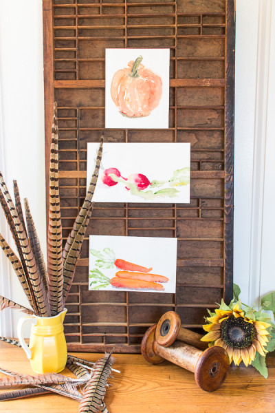 Pretty Harvest Watercolor Free Printables are the perfect way to decorate your home for fall! I Finding Silver Pennies I www.findingsilverpennies.com