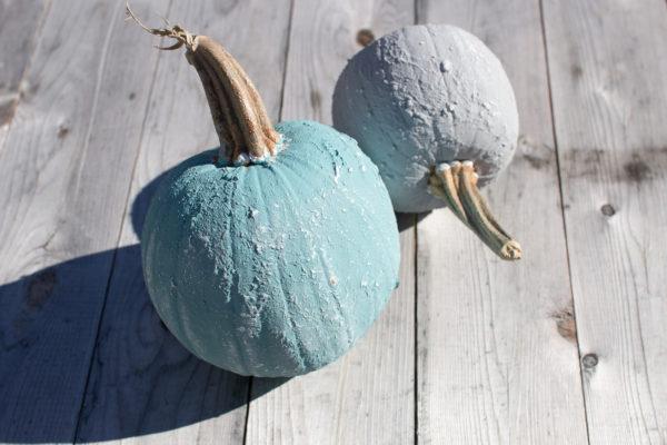 Pretty Saltwash Pumpkins.