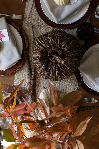 Pretty branches and feathers are pretty for Thanksgiving I Finding Silver Pennies