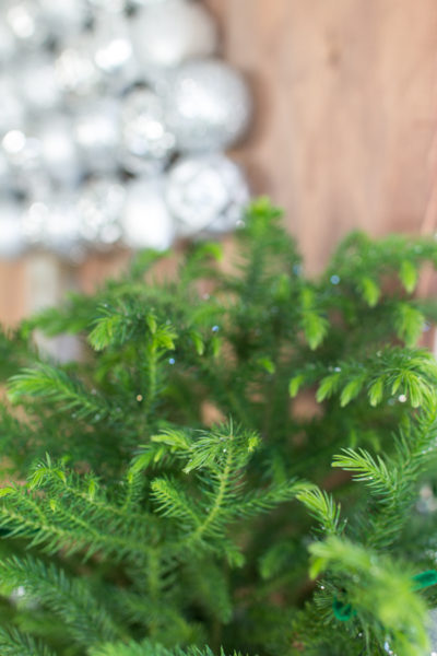 Pretty mini trees look so adorable for holiday decorating