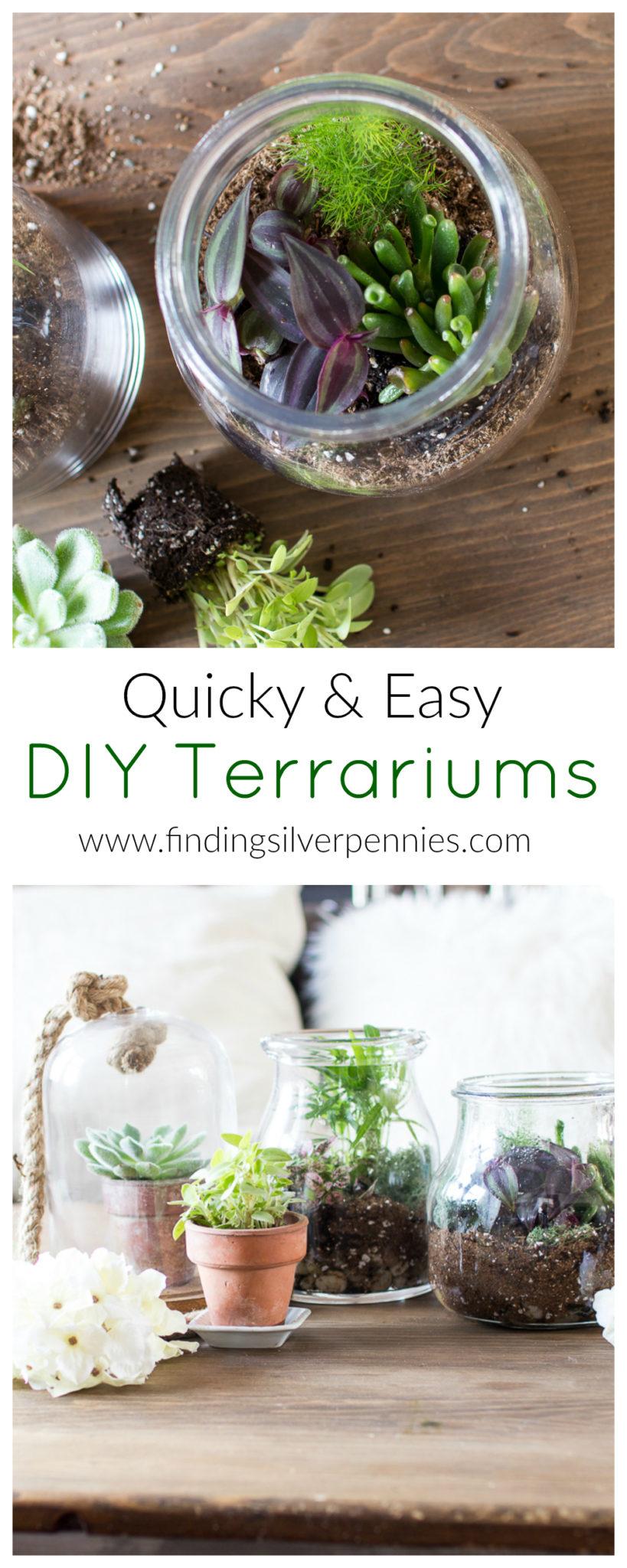 DIY Terrariums I Finding Silver Pennies