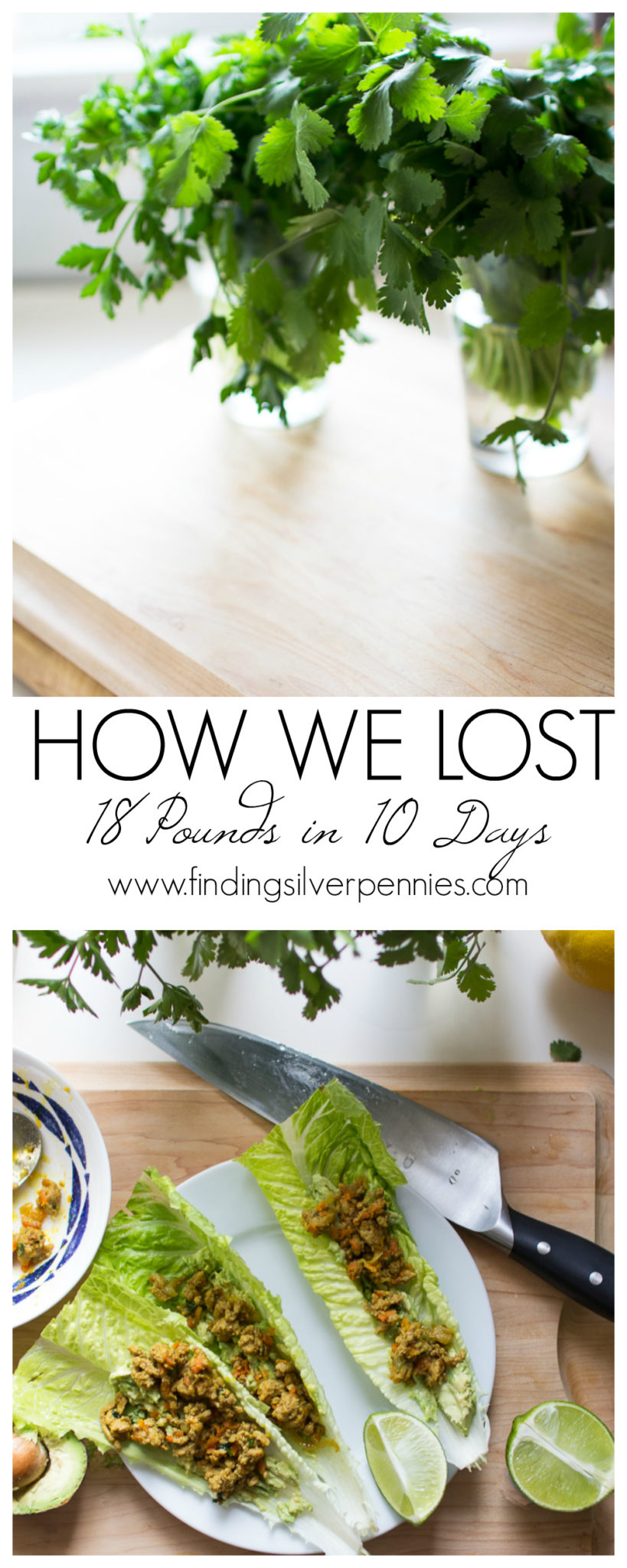 How We Lost 18 Pounds in 10 Days I Our 10 Day Detox I Finding Silver Pennies