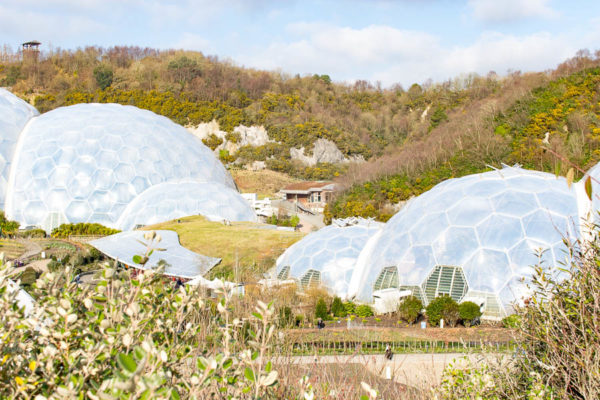 The Eden Project I Finding Silver Pennies