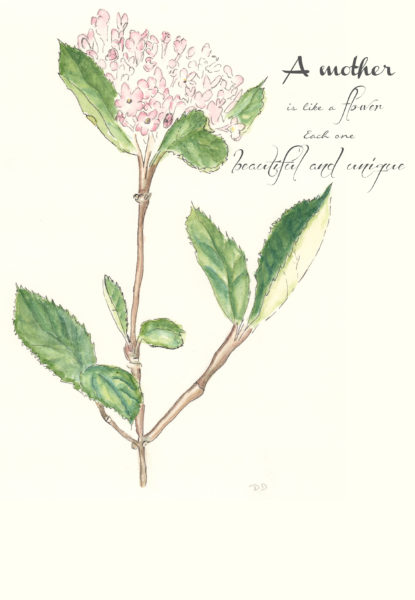 Pen and Watercolor Botanical I Mother's Day Free Printable I Finding Silver Pennies