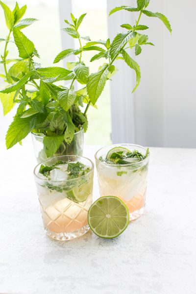 Refreshing Rhubarb Mojitos I Finding Silver Pennies