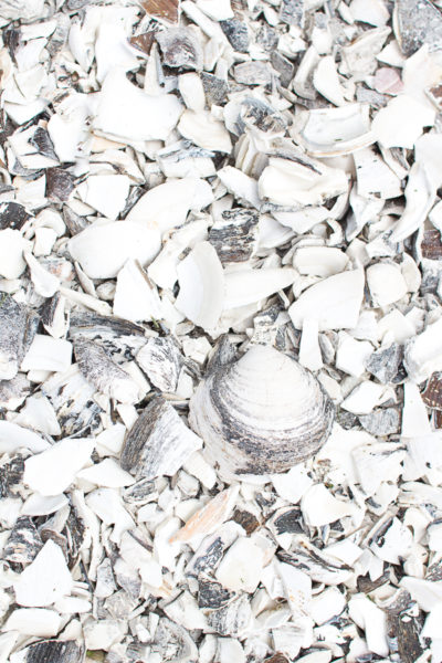 Crushed Shell Patio