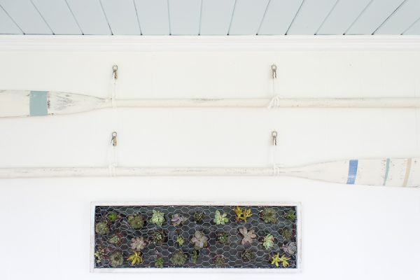 DIY painted oars, pretty blue ceiling and hanging succulents