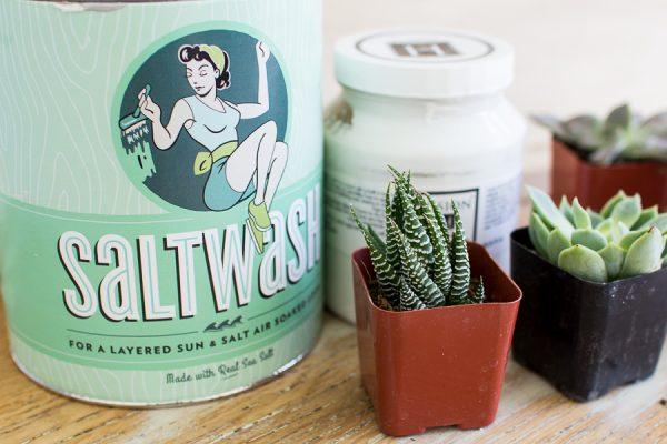 Saltwash, succulents and Fusion Mineral Paint