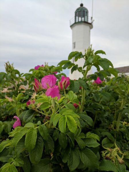 Beautiful Scituate Lighthouse