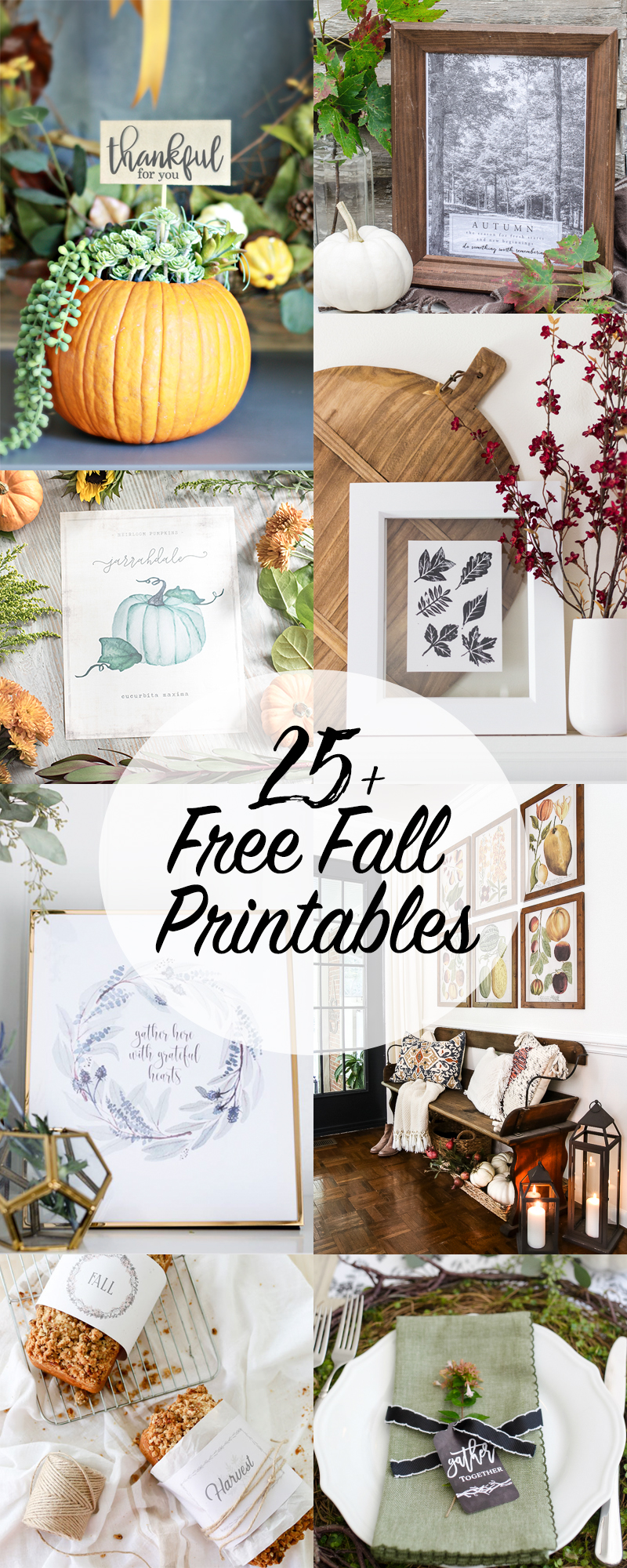 Over 25 Free Fall Printables
