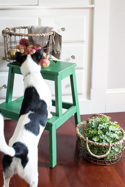 Lovely Painted Step Stool add Farmhouse Charm on a Budget
