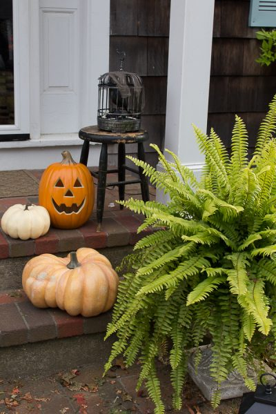 A mix of pumpkins, a caged raven, vintage stool and ferns for classic Halloween decor