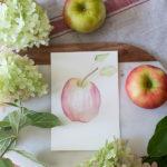 Watercolor Honey Crisp Apple (Free Printable)