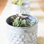 6 Ways to Add Greenery (with easy to care for plants)