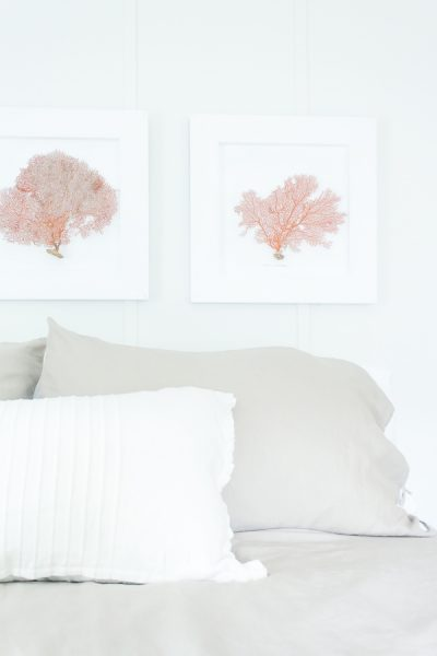 Simple Coastal Style and How to make your framed sea fans